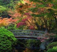Portland Japanese Garden   OregonLive.com