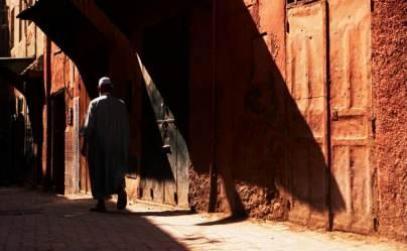 LOUP FARCI AUX DATTES & CITRON CONFIT (Maroc)
