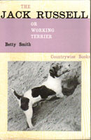 The Jack Russell Or Working Terrier