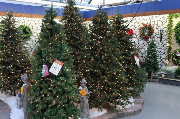 Garden Ridge Christmas Trees.Sale Garden Ridge Christmas Trees Year Of Clean Water