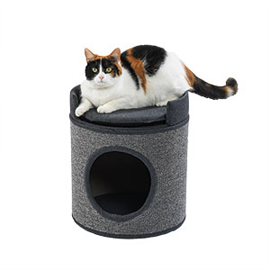 Pets At Home Cavendish Condo Cat Tower And Hideaway Pets At Home