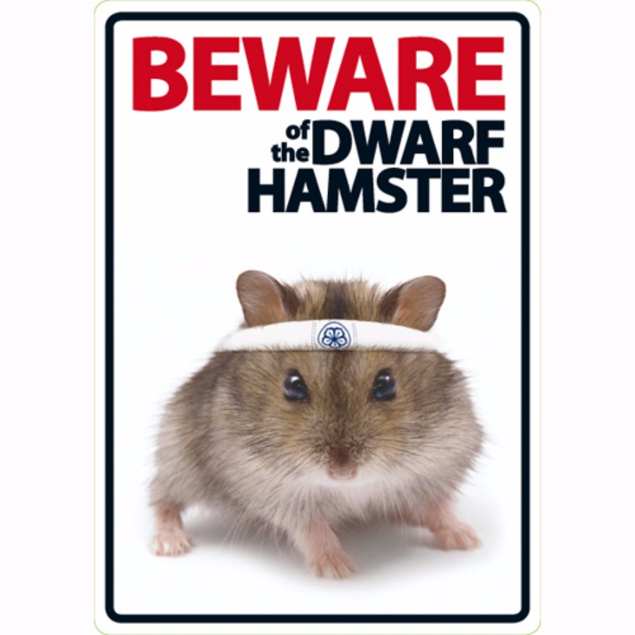 Beware Of The Dwarf Hamster Home Delivery Pets At Home