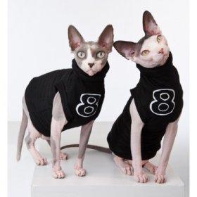 Ecco la linea di abbigliamento per gatti sfinge