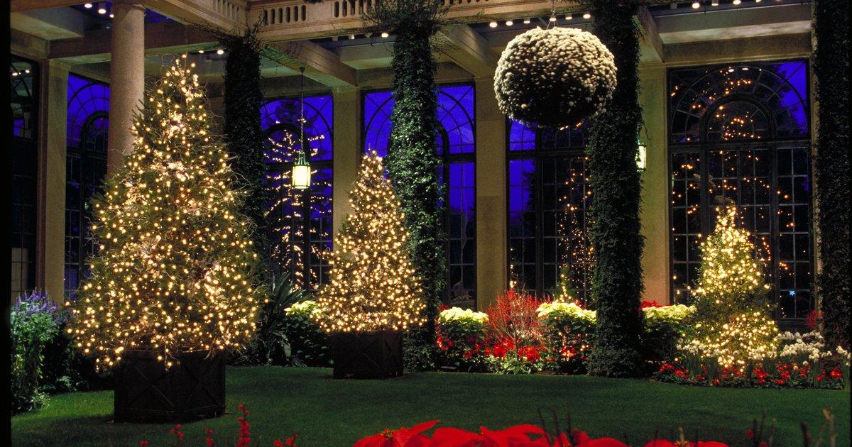 Longwood Gardens Christmas Display