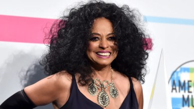 Diana Ross Announces First New Album in 15 Years