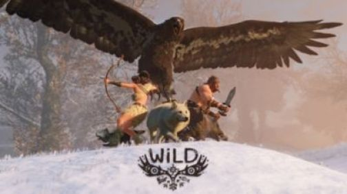 WiLD™ Game | PS4 - PlayStation