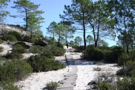 Nature Trails in Brejos da Carregueira