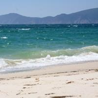 Travel along the Beach in Comporta