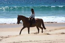Horse Riding Activities in Comporta