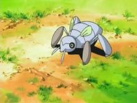 Primo (Ranger) - Pokémon Central Wiki