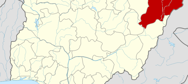 Borno state on map used to illustrate the story