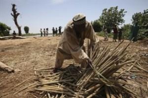 FILE: A farmer in Marnona, Sokoto State, Nigeria