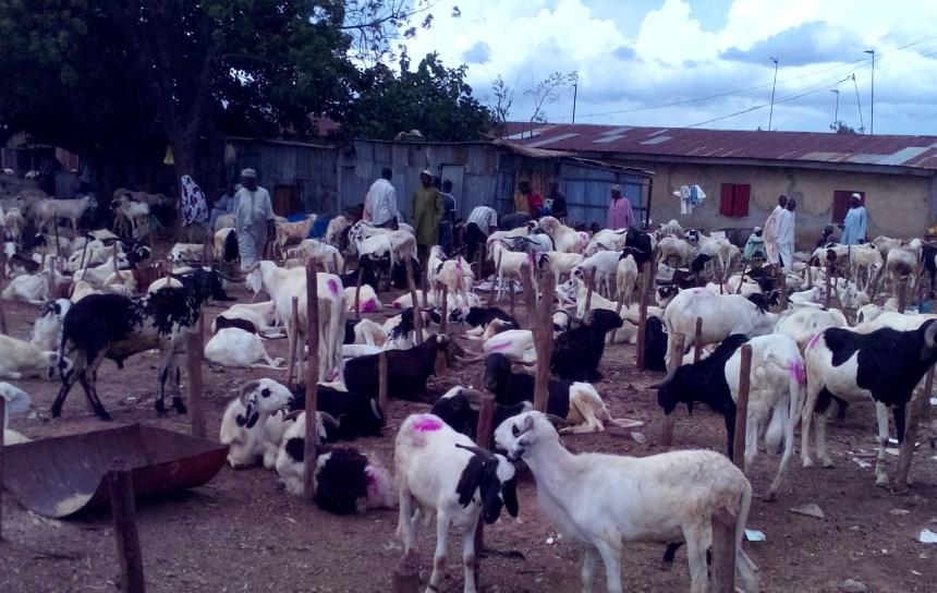 ARam Market in Tudun Wada Kaduna