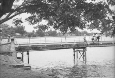 Gillian Hopwood photograph, 1954, 10 Five Cowrie Creek
