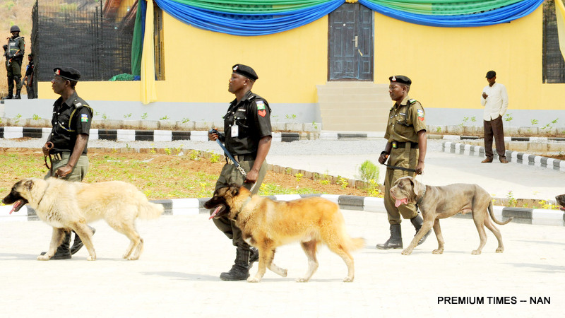 Police sniffing dogs