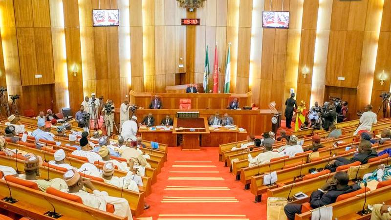Health minister's appearance, YabaTech name change, others top Nigerian Senate activities last week