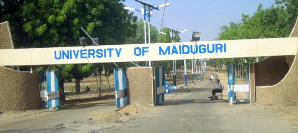 University of Maiduguri gate