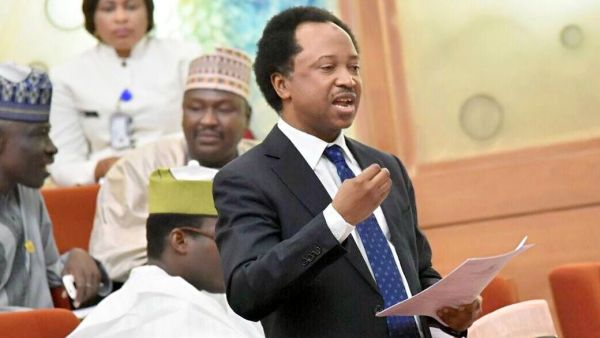 Senator Shehu Sani [Photo credit: Instagram]