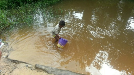 A little girl fetches water from a pond at Okorombokho, Eastern Obolo, Akwa Ibom