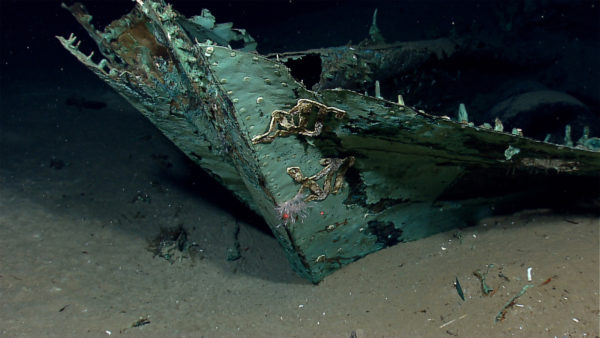 Paul Allen's Team Finds Sunken World War II Ship