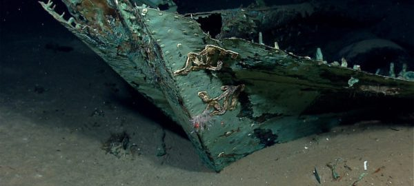 Wreck of the U.S. World War II warship [Photo: PM News Nigeria]