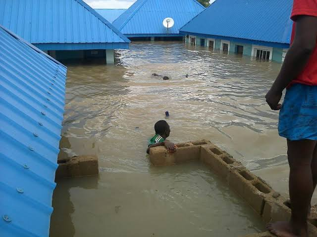 Flood displaces over 100 villages in Adamawa – Agency - Premium Times