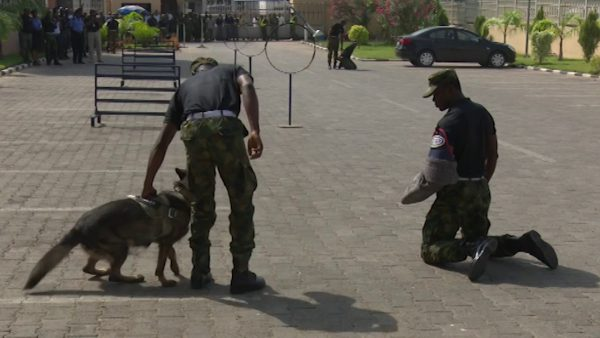 Nigerian Air Force train K-9 dogs. [Photo credit: YouTube]