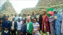 Ogun State Government launches its locally produced rice, accompanied by Kebbi state governor, Gov Atiku Bagudu. [Photo credit: Kebbi State twitter handle]