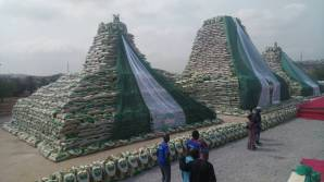Stack of rice