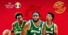 Nigeria's D'Tigers