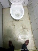 Toilets at the wing