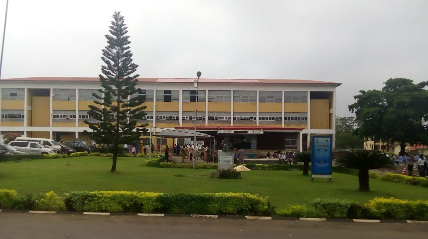 University of Ibadan International School