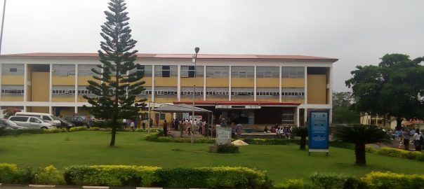 University of Ibadan International School