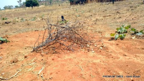 One of the mass graves in Karamai