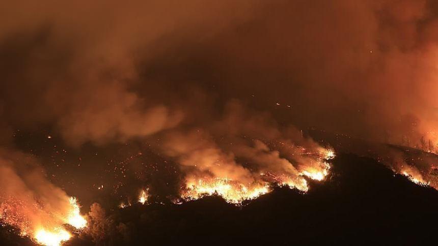 Wildfire in Sudan (Photo Credit: Anadolu Agency)