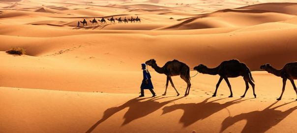 The Sahara Desert [Photo: ThoughtsCo]