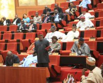 Nigeria Senate plenary