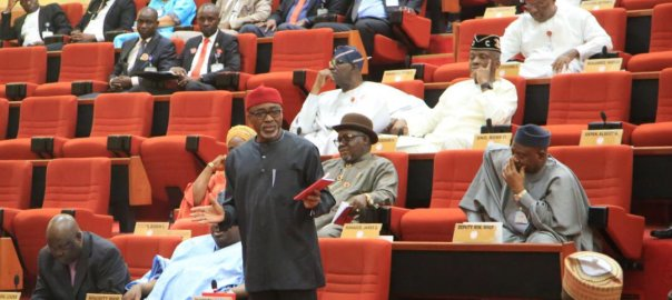 SENATORS: Nigeria Senate plenary