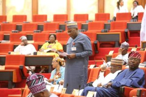 Senate in plenary