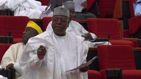 The senator representing Sokoto East, Ibrahim Gobir