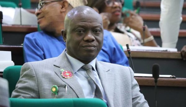 Bamidele Salam, the House of Representatives member representing Ede North/Ede South/Egbedore/Ejigbo Federal Constituency