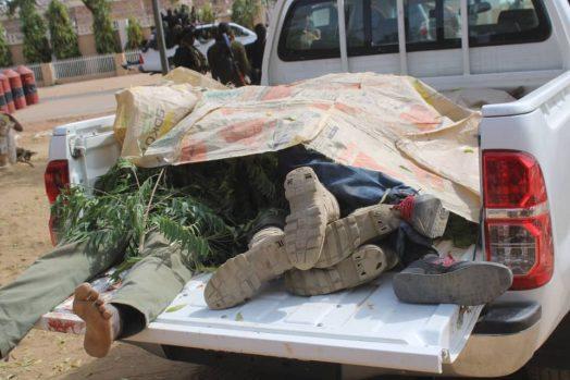 corpse evacuated at Dapchi.jpg