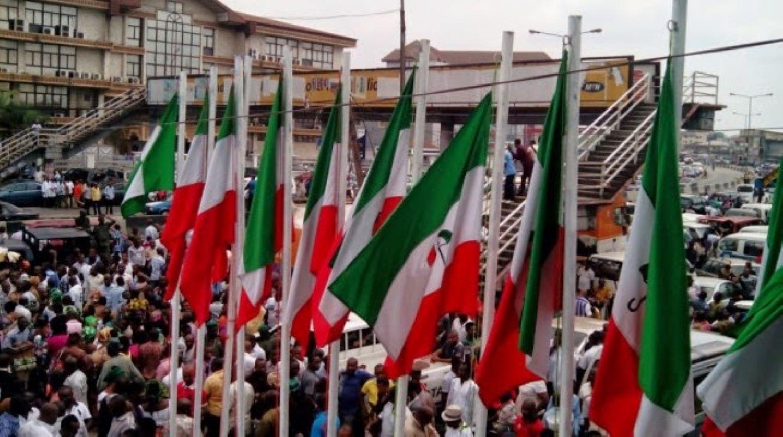 PDP flags [PHOTO: @OfficialPDPNig]
