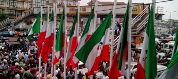 FILE: PDP flags [PHOTO: @OfficialPDPNig]