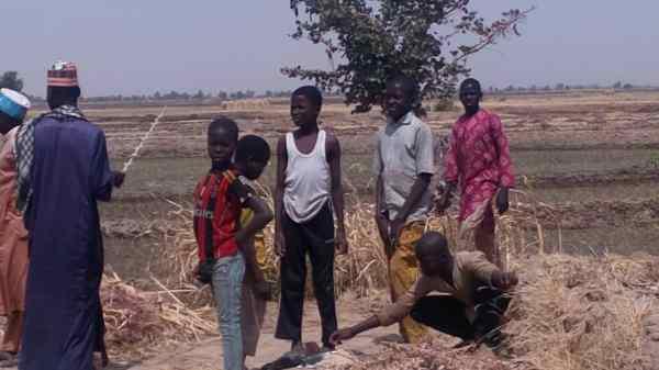 Mallam Kasibu in Argungu, Kebbi State, holding a whip used for the almajirai labouring on his farm.[PHOTO CREDIT: Taiwo Hassan Adebayo/PT]