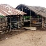 The hut-like Community Primary School in Ilupeju, Oja Odan