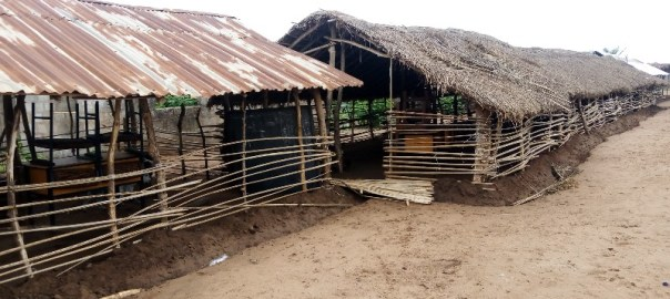 The hut-like Community Primary School in Ilupeju, Oja Odan