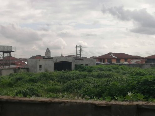 sideview of abandoned stadium project overtaken by bush at Oyp
