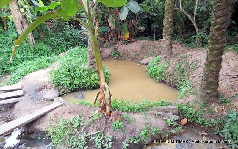 Stagnant water used in palm oil production