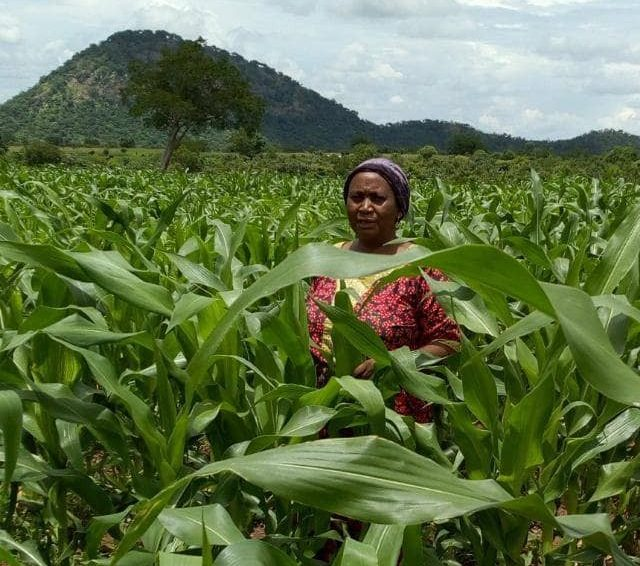 Hannatu Soni, a smallholder farmer
